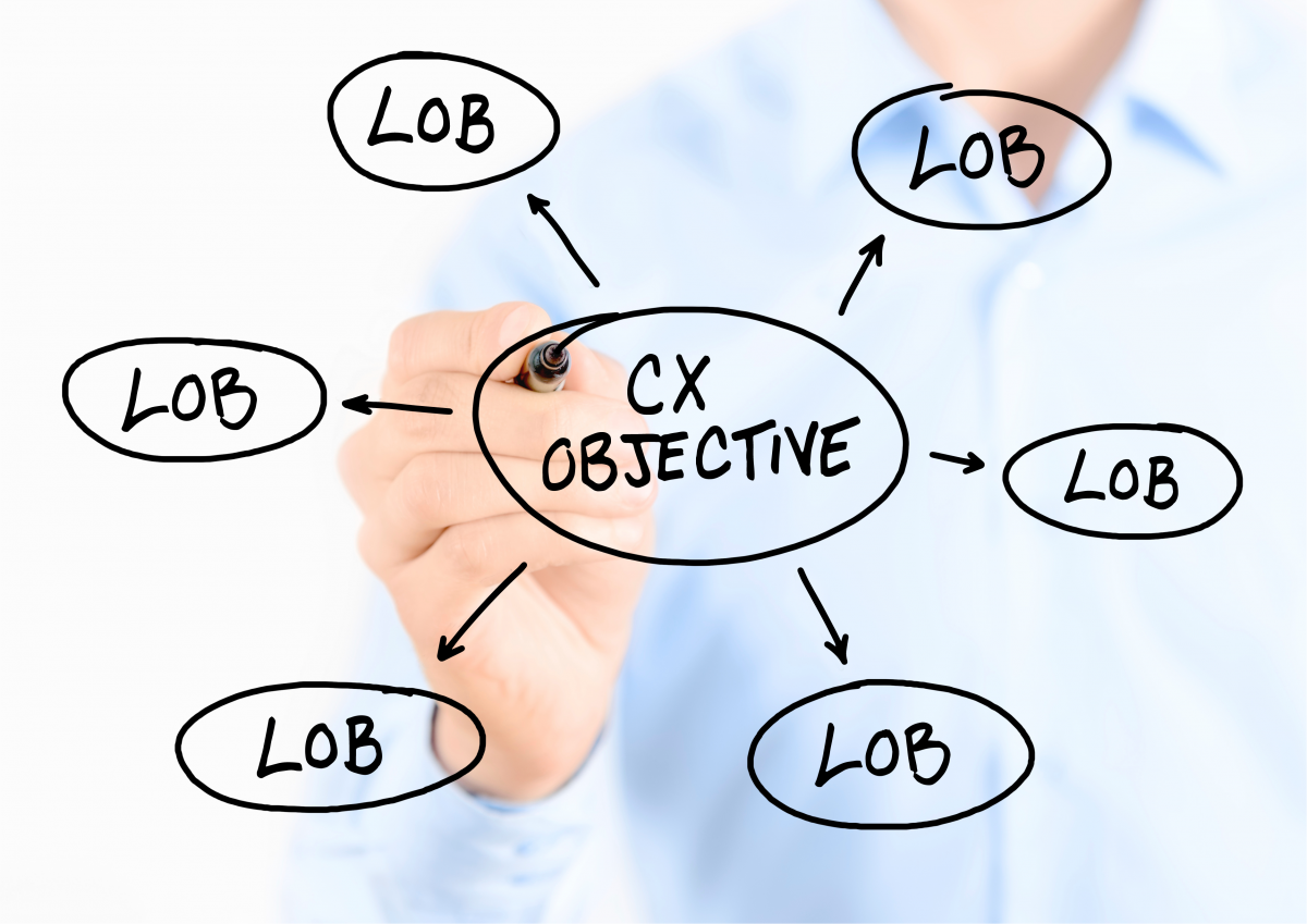 Have a CX Objective for each LOB